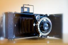 DSC06028 (SteveFE) Tags: camera 120 zeiss vintage soft bob spot 6x9 24mm om ikon zuiko f28 folding cokin nettar 5102