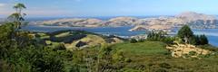 IMG0186 (hamilton_lee) Tags: newzealand panorama nz otago dunedin aotearoa otagopeninsula neuseeland otagoharbour nouvellezelande