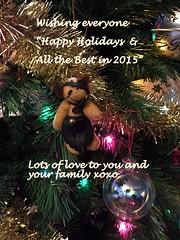Happy Holidays (Paige Rice) Tags: christmas happy newyear wishes happyholidays happychristmas happyxmas holdiays