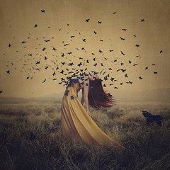 the sound of flying souls, part 2 (brookeshaden) Tags: selfportrait field fog butterflies awareness fineartphotography fibromyalgia chronicfatigue brookeshaden