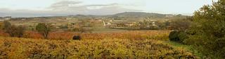 Fall Colors, Goult panoramic