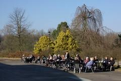 Dortmund, Rombergpark (I) (dididumm) Tags: trees people tree sunshine germany spring leute relaxing menschen nrw visitors botanicalgarden bume baum dortmund besucher frhling sonnenschein entspannen botanischergarten gste rombergpark