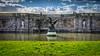 Statut... (pedrolitto) Tags: statue baroque château fontainebleau phototech