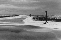 Frozen (Nuuttipukki) Tags: schnee winter bw snow film beach strand analog germany sw spiekeroog