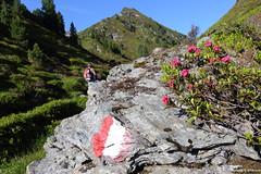 Austria (alpros) Tags: mountains alps austria tirol sterreich berge alpen tyrol schwaz sterrike alperna euroregiontyrolsouthtyroltrentino