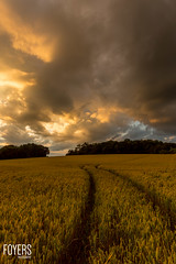 Great clouds over Sweffling (Bob Foyers) Tags: wordpress foyersphotography 1740mml sufffolk sunset sweffling canon5dmark3 dusk
