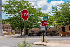 So stop already! (Thad Zajdowicz) Tags: street sign stop trees urban city sky clouds santafe newmexico zajdowicz travel color green outdoor outside availablelight lightroom text streetsign letters words writing
