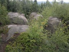 Broumovsk stny (d.koranda) Tags: broumov broumovsko region broumovskstny hills mountains rocks nature outdoors trees forest woods boulders