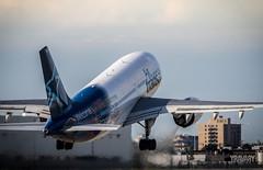 Airbus A310-304 (yravaryphotoart.com) Tags: canon airplane montreal aircraft dorval avion yul aeronef canoneos7d canonef70200mmf28lisiiusm aéroportmontrealtrudeau yravaryphotoart yravaryphotoartcom
