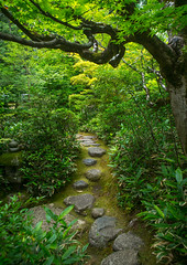 Garden in koto-in zen buddhist temple in daitoku-ji, Kansai region, Kyoto, Japan (Eric Lafforgue) Tags: travel trees heritage tourism japan vertical gardens architecture night garden landscape outdoors photography tokyo scenery kyoto asia day exterior traditional culture nobody nopeople architectural zen daytime idyllic preservation traditionalculture tranquillity tranquilscene landscaped daitokuji culturalproperty nonurbanscene touristdestination 0people traveldestination colourimage kansairegion colourpicture traditionallyjapanese japan161646