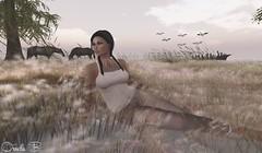 L'amour est-il dans les prs ? Lost Dream (ornella batriani) Tags: horse bird nature prodigy maitreya catwa