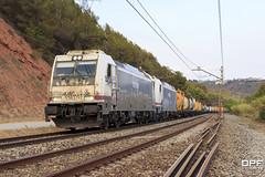 253-051 (Escursso) Tags: 253 253030 253051 barcelona bombardier castellbisbal catalunya freight llobregat mercancias renfe trainspotting traxx railway s253 summer train tren