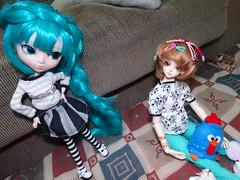 Dimenses [02/06] (Meteor-a) Tags: bjd ball jointed doll pullip cute kawaii hatsune miku minzy magic time miro connor femboy galinha pintadinha