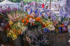 TSD_RAW_160731-203 (DohertyTim) Tags: flowers farmersmarket somerville unionsquare nikonsp ektar100