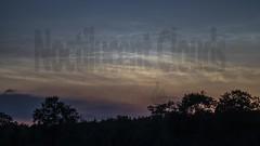 Noctilucent Clouds (NLC) Schorfheide (wortschnipsel) Tags: timelapse zeitraffer samyang walimex sony alpha 7s a7s a6000 schorfheide nlc noctilucent clouds nachtleuchtende wolken night nacht brandenburg germany deutschland wortschnipsel stars sterne sternenschnipsel