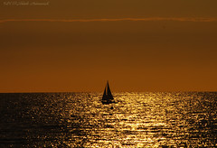 Belgian coast (Natali Antonovich) Tags: belgiancoast sea northsea lifestyle relaxation seasideresort seashore seaside seaboard horizon sunset boat reflection water landscape romanticism romantic wenduine belgium belgique belgie silhouette