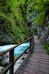 160517_075738_AB_3809 (aud.watson) Tags: europe slovenia vintgargorge radovariver radovnavalley gorge river rocks walkway