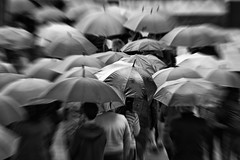 2016.07.28 (michaeljoakes) Tags: wet dslr canon weather crowd people rain umbrella bw mono noiretblanc zoom blur canonef70200mmf28lis canoneos5dmarkii explore explored explore20160727 summer shower eos day outdoor ngc