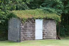 Natural Roof (jcAOY) Tags: pringle luzerne nepa graveyard orthodox grassroof nikond700 50300