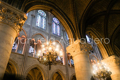 #catedral #cathedral #cathdrale #notredame #2014 #pars #paris #francia #france #ciudad #city #viajar #travel #viaje #reflejos #reflexes #highlights #paisaje #landscape #photography #photographer #sonyalpha #sonyalpha350 #sonya350 #alpha350 (Manuela Aguadero) Tags: sonyalpha350 ciudad 2014 paisaje travel landscape reflejos viaje viajar photography highlights reflexes catedral city paris sonya350 francia notredame cathdrale sonyalpha photographer france cathedral alpha350 pars