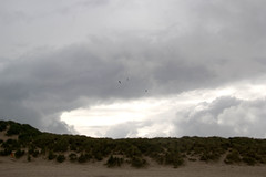 IMG_1077 (EadaoinFlynn) Tags: curracloe beach sea ireland irishsea wexford