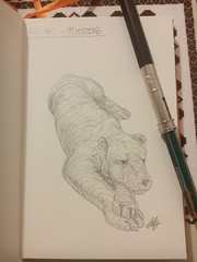 Day 1 of my sketch streak (# annola) Tags: drawing disegno dessin matita crayon bleistift sketch schizzo animals doodle
