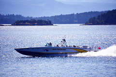 Goldwing - whale watching boat (D70) Tags: eaglewing tours whale wildlife scarab monohull 26 people 32 knots 1250 hp volvo diesel engine i washroom goldwing spray plume