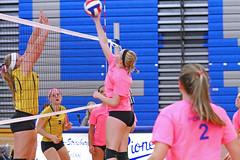 IMG_10532 (SJH Foto) Tags: girls volleyball high school lampeterstrasburg lampeter strasburg solanco team tween teen east teenager varsity net battle spike block action shot jump midair