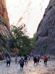 2016-09-p02-narrows-mjl-015 (Mike Legeros) Tags: ut utah zion zionnationalpark narrows river slotcanyon swiftwater wetfeet watchyourstep