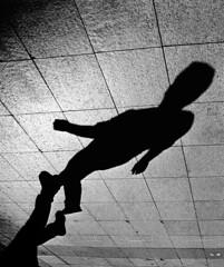 Off Grid (blueP739) Tags: olympus om4 om1n olympusom om3ti om2sp om10 om1 om2n om3 olympusom1 orange olympusplustekplustek7200om4 plustek7200 pussy plustek tulip turkey turkishphotography ilford id11 id1111 wideangle bw blackwhite monochrome zuiko2828 pavement scanner shadow street kentmere100
