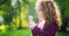 Child with white dandelion in your hand. Background toning instagram filter. (istanbulalternatiftip) Tags: activity aspirations background beautiful blow blowing candid child childhood curly cute dandelion day enjoyment female flower fluffy freedom fun garden girl green human innocence joy kid leisure lips may people play pretty red releasing satisfaction seed small spring summer sun sunlight sweet view allergies asthma breathing bronchitis closeup fluff instagram
