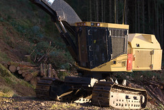 Tigercat LH855C (Mrtainn) Tags: scotland highlands alba forestry escocia alban szkocja harvester esccia schottland westerross schotland ecosse tigercat lochalsh scozia skottland rossshire skotlanti skotland balmacara broskos skogbruk bosbouw forstwirtschaft esccia skcia foresterie albain skogsbruk iskoya  rawtherapee  lenictwo lochaillse metstalous metsnhoito skovbrug skrdare abatteuse gidhealtachd buanaiche bailemacara coilltearachd taobhsiarrois siorramachdrois forstgerte forstwesen harwester  harvesteri  scoia skogindustri skogvesen hakkuukone lh855c  enginyeriaforestal lesnictv  ingenierademontes basotze umarstvo selvicoltura mikkis tigercatlh855c highlandtimberharvesting