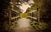 I will follow (Anthonypresley1) Tags: park wood bridge trees plants usa brown color green nature leaves animal animals sepia landscape photo construction decay memphis tennessee wildlife south surreal structure nails dreamy conceptual iwillfollow