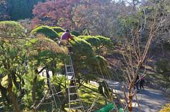 Maintenance (malinowy) Tags: winter japan 35mm temple nikon buddhist nippon nikkor zima narita naritasan honshu shingon japonia swiatynia malinowy d7000 shinshōji malinowynet