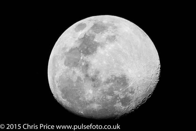 Moon, Madikwe Game Reserve