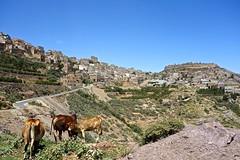 Yemen (EleanorGiul ~ http://thevelvetrocket.com/) Tags: yemen イエメン iémen йемен justinames 也门 arabpeninsula locallifeinyemen httpthevelvetrocketcom เยเมน