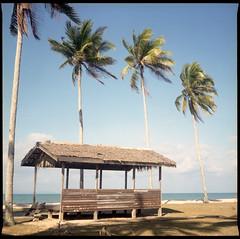 'Memory of Terengganu'. . . (Hafiz_Markzzaki) Tags: sea mamiya beach mediumformat landscape scenery kodak bluesky malaysia terengganu coconuttrees 120mm filmphotography portra160 c330s setiu negativescanned penarik sekor80mmf28 canoncanoscan8800f kampungmangkuk hafizmarkzzaki