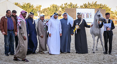 2015 Qatar Straight Egyptian Arabian Horse Show (www.ziggywellens.com) Tags: show horse international egyptian arabian straight qatar 2015 canoneos5dmarkiii