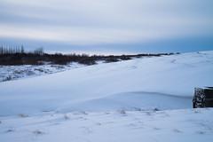 DSC01518 (ekremenak) Tags: photo iceland 1502 150212
