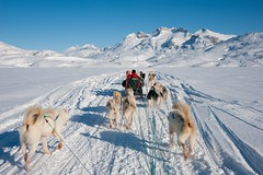 Dog sledding tour in Tasiilaq, Greenland (ykumsri) Tags: active adventure alaska animal arctic beautiful black blue clear cold countryside dog editorial environment frost frozen greenland greenlandic huskies husky ice inuit landscape mountain nature north polar relax ride run sky sled sledge snow snowy sport together tourism transportation travel trip vacation white winter wintertime work working