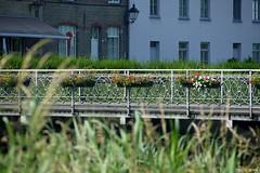 Dammesteenweg (a-r-a-55) Tags: damme belgien brcke bridge