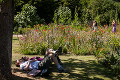 Snooze (prachita-ta) Tags: street summer sunshine garden outdoor oxford snooze