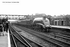 05/08/1961 - Doncaster, South Yorkshire. (53A Models) Tags: britishrailways lner gresley a4 462 60024 kingfisher steam passenger theelizabethan doncaster southyorkshire train railway locomotive railroad