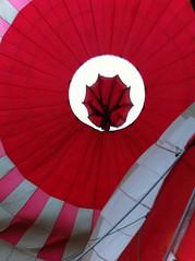 160724 - Ballonvaart Veendam naar Eexterzandvoort 26