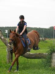 P1270012 (serita.vossen) Tags: horse horses eventing cross paardrijden paard