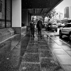 Everyday #Adelaide No. 326 (Autumn/Winter) (michellerobinson.photography) Tags: southaustralia people community capturinglife documentary bw australia everyday editedonipadair everydayadelaide life everydayaustralia instagram dailylife cityliving blackandwhite streetphotography blackandwhitephotography streetphotographer flickrelite 4tografie adelaide snapseed lifestyle citylife michellerobinson streetlife urban monochrome michmutters streetphoto scene street ex10 rainyday casio candid weather interestingpeople pocketcamera pointandshoot