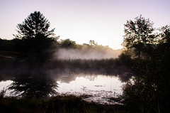 Vermont fog (Sunset Master) Tags: fog nature vermont landscape mist trees light sunrise sun sky reflection tree water life clear calm peaceful nikon d7000 sigma elijah adams contrast