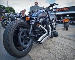 Bar Hopper... (Harleynik Rides Again.) Tags: barhopper sportster 48 hd harley bike motorcycle nikondf harleynikridesagain