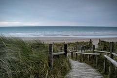 Summer Breeze (hall1705) Tags: summer breeze climping westsussex path sea seascape seaside dunes beach d3200 nature fence