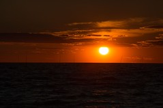 Back To Summer (SueZinVT) Tags: canon70d capecodbay cape cod sea camp sunset brewsterseacamp sailboats silhouettes clouds outdoors massachusetts orange black